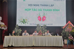 Launching Thanh Binh Cooperative